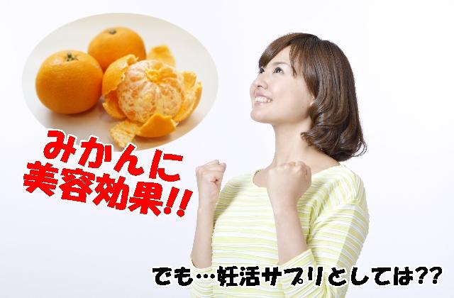 美ターナ葉酸サプリ+